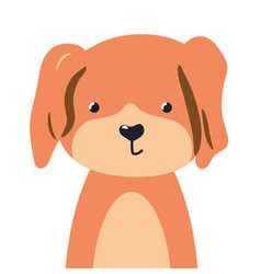 Dog cute animal baby face vector