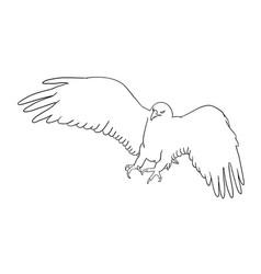 Eagle line art 06 vector
