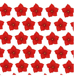 flower geranium wallpaper decoration vector image