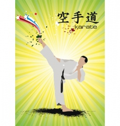 karate poster vector image