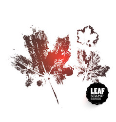 maple leaf print variants vector image