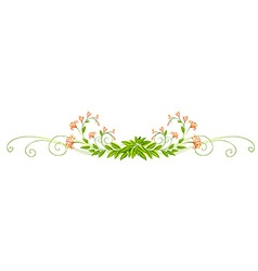 Plant design with leaves and flowers vector image