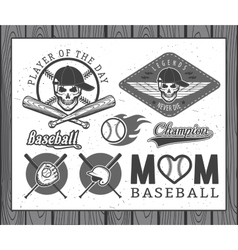 Baseball labels and badges vector image