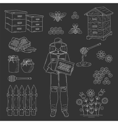 Beekeeper and honey set vector image