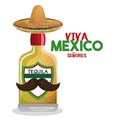 bottle tequila with hat and moustache mexico vector image