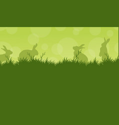 bunny easter on green backgrounds vector image