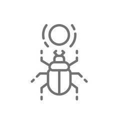 Egyptian scarab beetle sacred bug line icon vector