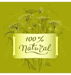 label template with herbs vector image