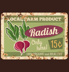 local farm radish rusty metal plate vector image