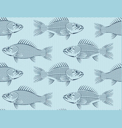seamless background with drawn sketches fish vector image