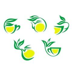 Tea cups symbols with lemon and green leaves vector