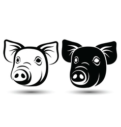Face Pig vector image