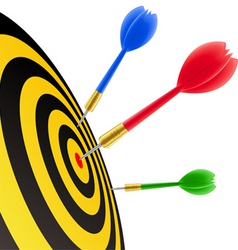darts hitting the target vector image vector image