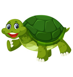 a green turtle on white background vector image