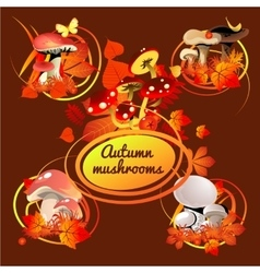 Autumn card bouquet of leaves and mushrooms vector image