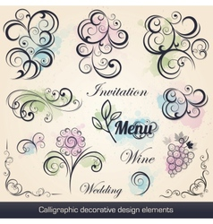 calligraphic decorative design elements vector image