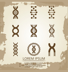 Dna icons - vintage biology poster with dna vector