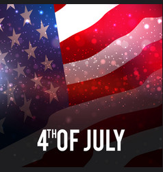 fireworks background for independence day vector image