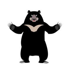 Himalayan bear happy emotion merry wild animal vector