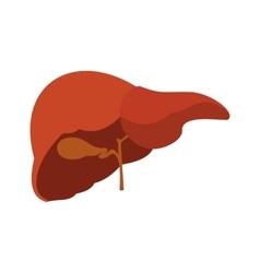 Human liver icon vector