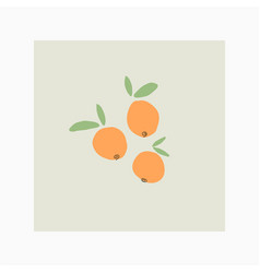 orange citrus fruits doodle hand drawn vector image