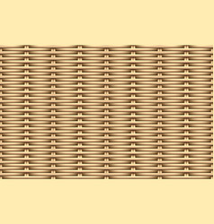 seamless 3d weave rattan pattern art vector image