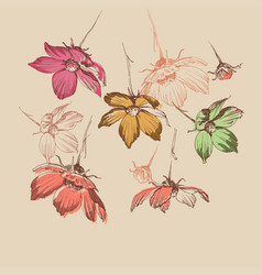 spring floral background wild flowers falling vector image