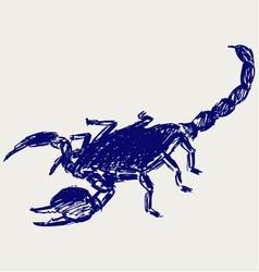 Emperor Scorpion vector image vector image