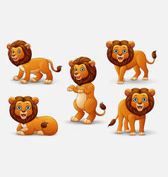 cartoon lion collection set vector image