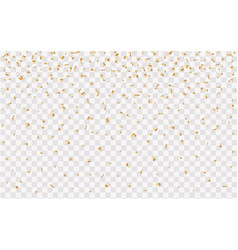 confetti golden and tiny falling on transparent vector image