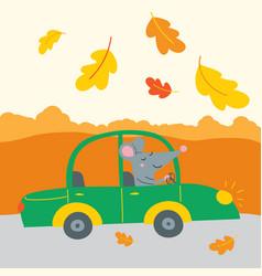 cute rat traveling car vector image
