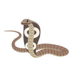 dangerous wild animal reptile poisonous cobra vector image