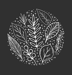 hand-drawn leaves doodles on chalk black board vector image