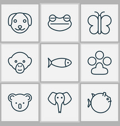 Nature icons set with koala frog seafood and vector