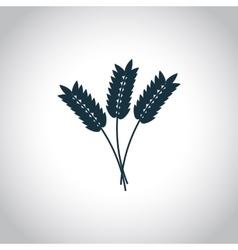Wheat ears Flat icon vector image