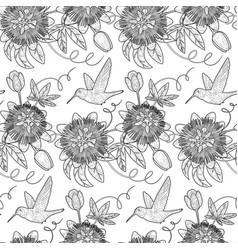hummingbird and passiflora seamless pattern vector image vector image