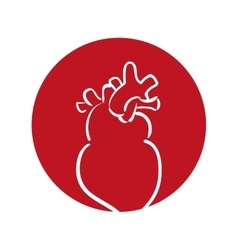 heart human organ health red background vector image