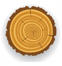 wooden log cut vector image