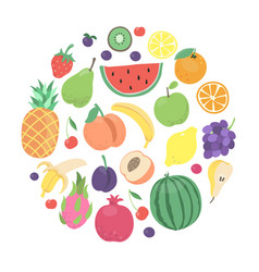 cartoon doodle fruits and berries circle design vector image