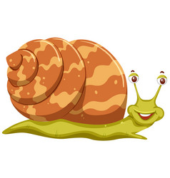 cute orange cartoon snail vector image