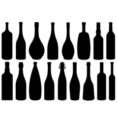 Set of different glass bottles vector