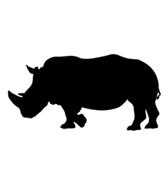 Rhino silhouette vector image vector image