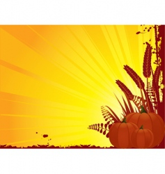 grunge pumpkin and corn vector image