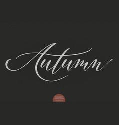 hand drawn lettering - autumn elegant modern vector image vector image