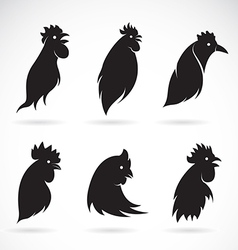 image of an chicken head vector image