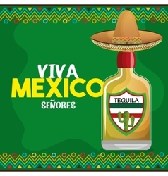 viva mexico tequila hat graphic vector image