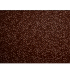 brown leather Stock vector image