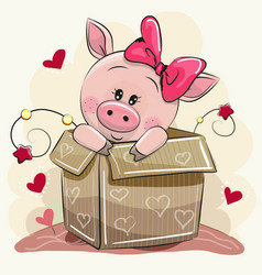 cute cartoon piggy girl and a box vector image