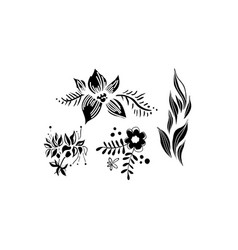 flowers and leaves set floral design elements vector image