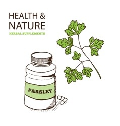 Health and Nature Supplements Collection vector image